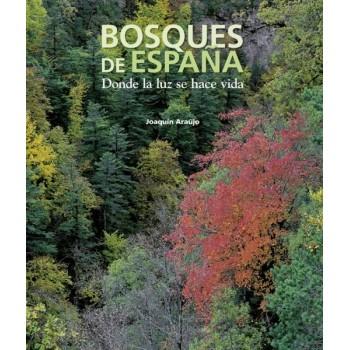 Bosques de España. Donde la...