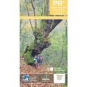 PR Asturias V