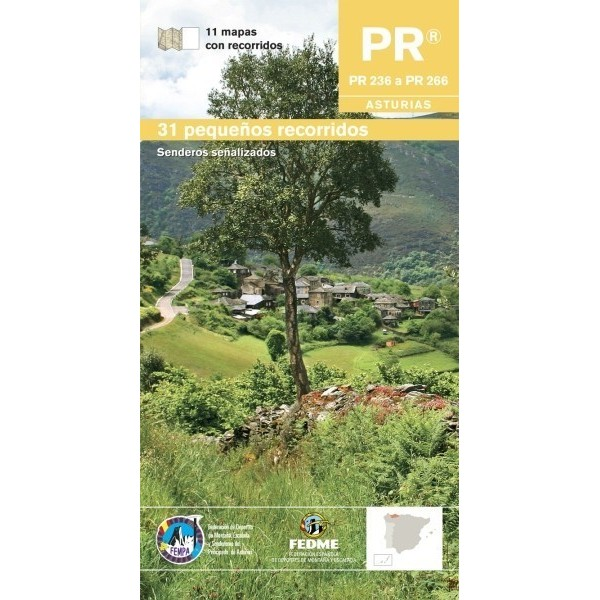 PR Asturias IV