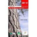 GR 10. Sierras de Albarracín y Javalambre. Sistema Ibérico